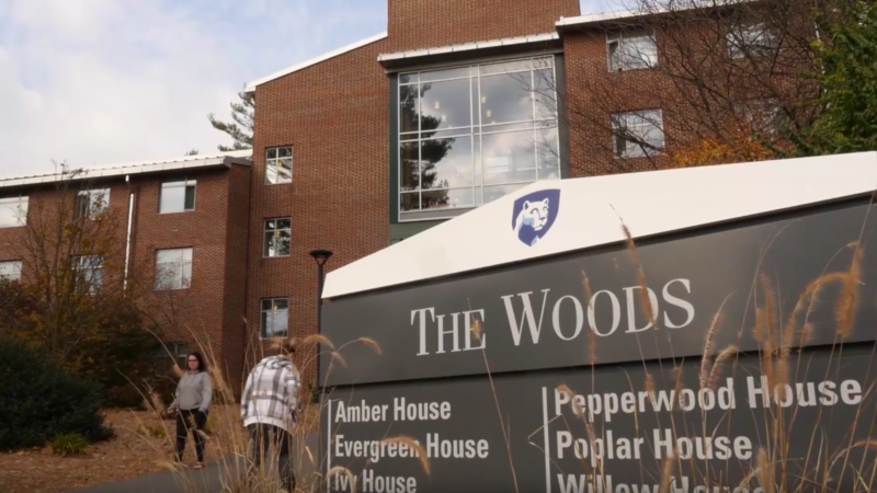 "Shot of ""The Woods"" sign outside the residence halls on campus"