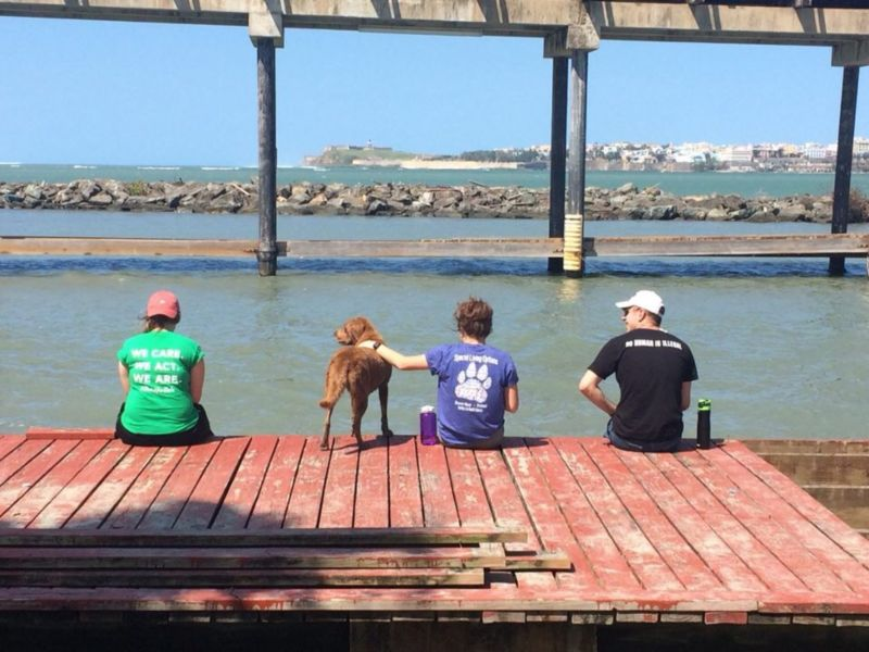 Three students relaxing on a dock overlooking the water.