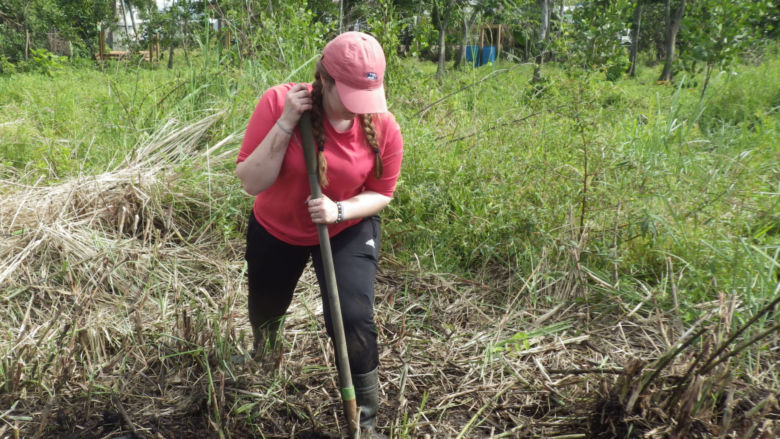 Penn State Berks students worked to help restore mangrove forests during the Alternative Spring Break to Puerto Rico.