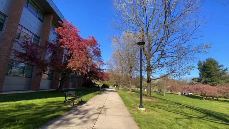 A Walk Through Campus